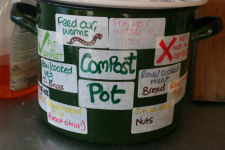 Image - Kitchen waste for worm compost